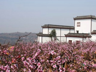 龙泉花果山